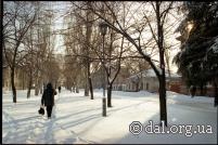 Липовая аллея улицы В.И. Даля.